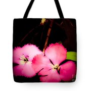 Last Of The Pink Dianthus Flowers Tote Bag