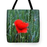 Last Poppy Tote Bag
