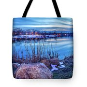 Last Rays Of Winter Tote Bag