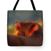 Last Remaining Light Of The Day Tote Bag