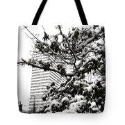 Last Snow Fall  Tote Bag