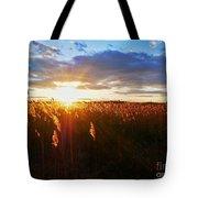 Last Sunset, Plum Island Tote Bag