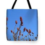 Last Year's Sumac Tote Bag