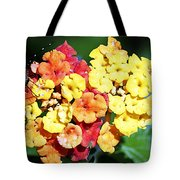 Latana And Friend Tote Bag