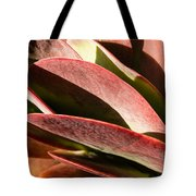 Late Afternoon 1 Tote Bag