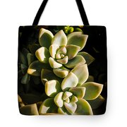 Late Afternoon 2 Tote Bag
