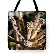 Late Afternoon 3 Tote Bag