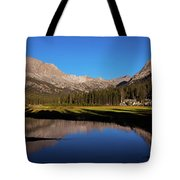 Late Afternoon At Mcclure Meadow Tote Bag
