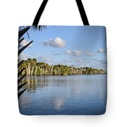 Late Afternoon Sunlight II Tote Bag