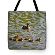 Late Afternoon Swim Tote Bag