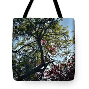 Late Afternoon Tree Silhouette With Bougainvileas II Tote Bag