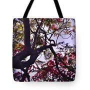 Late Afternoon Tree Silhouette With Bougainvilleas IIi Tote Bag