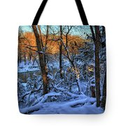Late Afternoon Winter Light Tote Bag