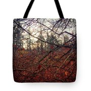 Late Autumn Morning Tote Bag