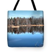 Late Autumn Reflections Tote Bag