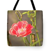 Late Beauty Between Thorns Tote Bag