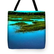 Late May On The Moose River Tote Bag