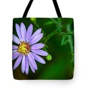 Late Purple Aster Tote Bag