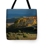 Late Stand Tote Bag