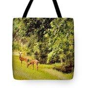 Late Summer Deer Tote Bag
