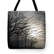 Late Winter Afternoon Tote Bag