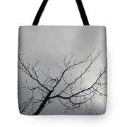 Late Winter Clouds Tote Bag