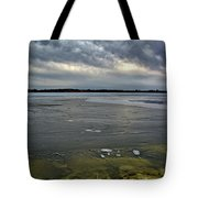 Later Winter Ice Tote Bag