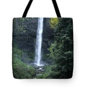 Latourelle Falls-columbia River Gorge Tote Bag