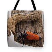 Laughing Beetle Tote Bag