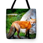 Laughing Fox Tote Bag