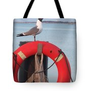 Laughing Gull At Lewes Tote Bag