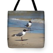 Laughing Gulls On The Beach Tote Bag
