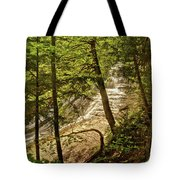 Laughing Whitefish Falls 2 Tote Bag by Michael Peychich