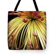 Lava Chrysanthemum Tote Bag
