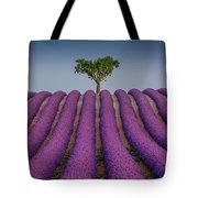 Lavander Field Luberon Tote Bag