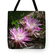 Lavendar Cactus Flowers Tote Bag