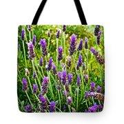 Lavender At Pilgrim Place In Claremont-california Tote Bag