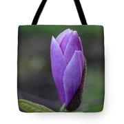 Lavender Blossoms Tote Bag