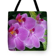 Lavender Colored Orchids Tote Bag