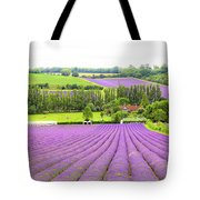 Lavender Farms In Sevenoaks Tote Bag