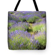 Lavender Field, Tihany, Hungary Tote Bag