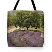 Lavender Field Tote Bag