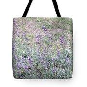 Lavender Fields Forever Tote Bag
