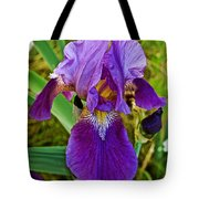 Lavender Iris At Pilgrim Place In Claremont-california  Tote Bag