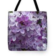 Lavender Lilacs Tote Bag