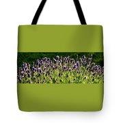 Lavender Pano Tote Bag