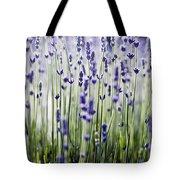 Lavender Patterns Tote Bag