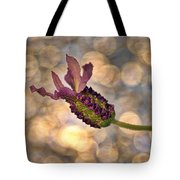 Lavender Tote Bag by Rod Sterling
