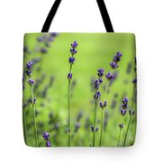 Lavender Spikes  Tote Bag