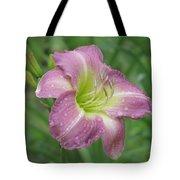 Lavender Vista - Daylily Tote Bag
